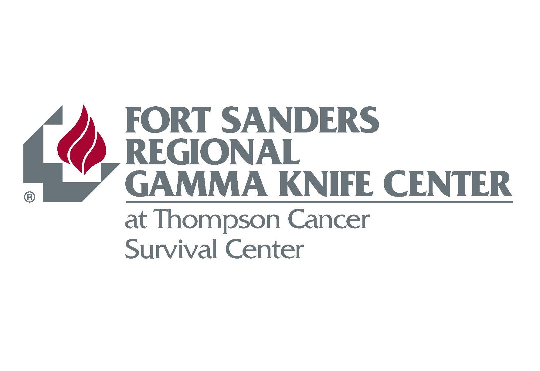 Gamma Knife Logo